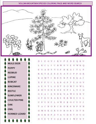VMF Kids Coloring Page and Word Search